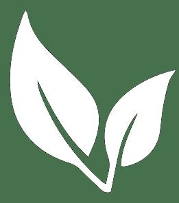 100 por ciento libre de bisfenol A BPA Free